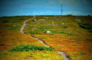 Stig för vandring i Kittelfjäll